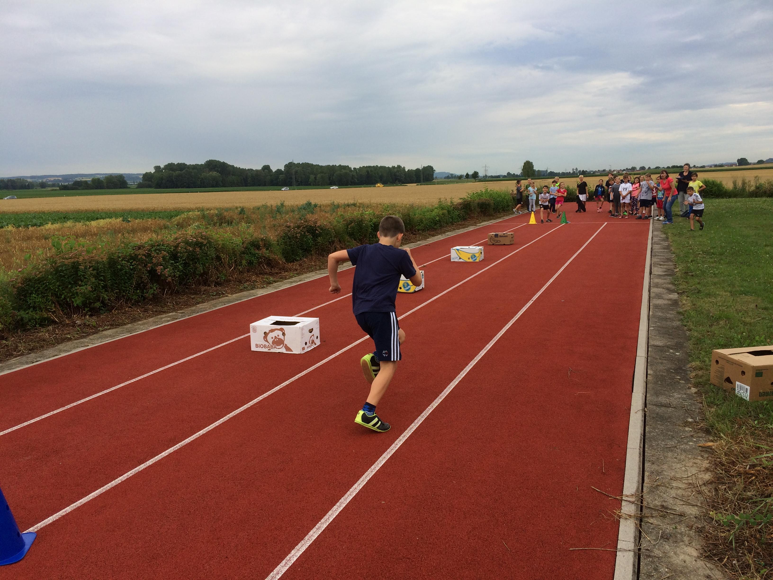 Sportfest Hindernislauf